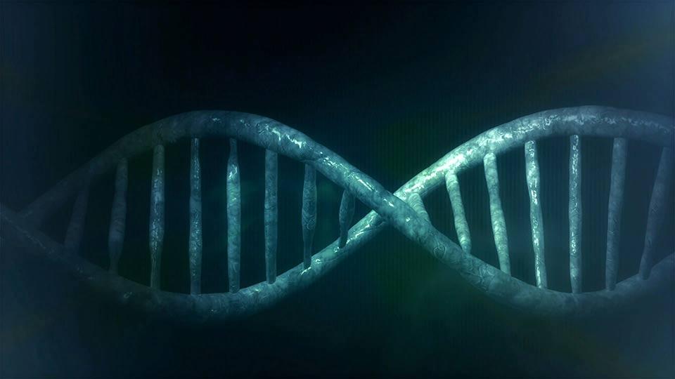 Forschung zum Genome-Editing.