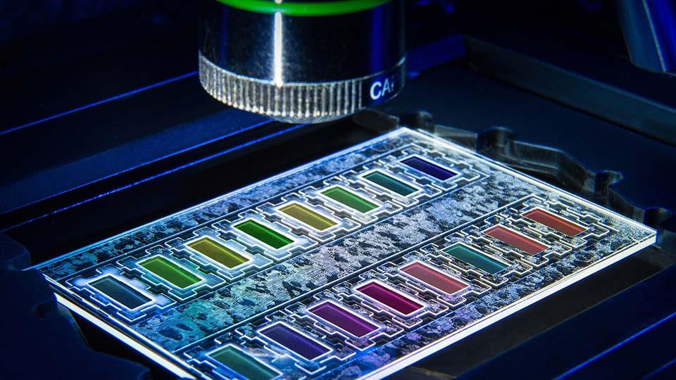 Miniaturisierter Wachstumschip zur Erkennung bakterieller Resistenzen.