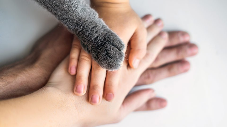Elternzeit: Nach der Geburt eines Kindes dürfen sich Mütter und Väter erstmal eine Auszeit nehmen.
